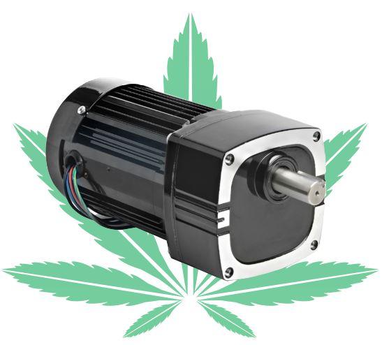 Molecular Distillation Equipment for the Cannabis Industry