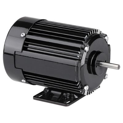 42R Series AC 3-Phase Inverter Duty Motor